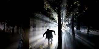 Monsters uit het bos