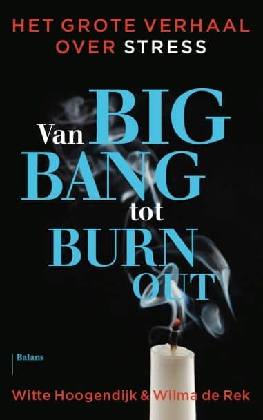 Boek Big bang tot burnout