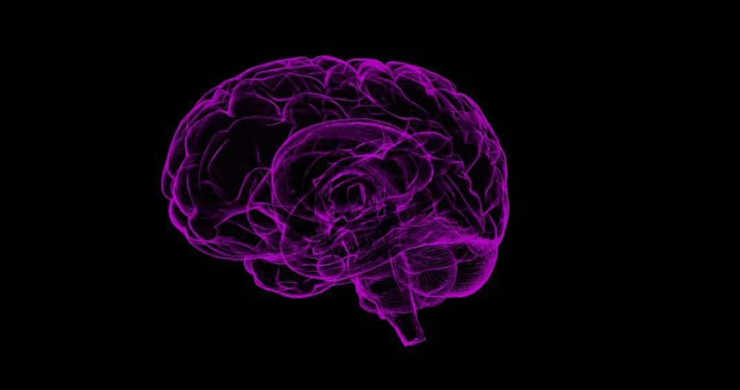 Hoe blijft je brein gezond