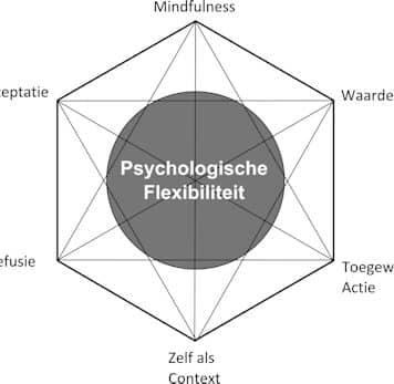 ACT-Hexaflex-Stressplein